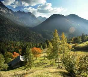 Tedesco in Trentino